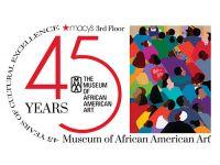 Museum of African American Art
