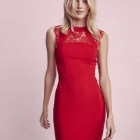 Sleeveless Lace Yoke Sheath Dress