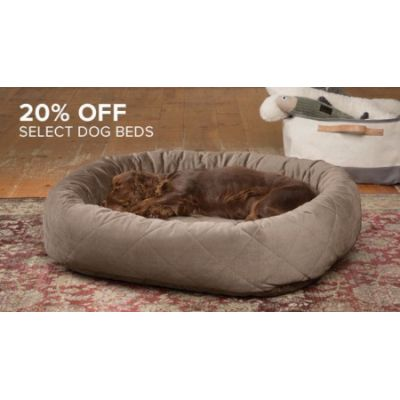 20% Off Select Dog Beds